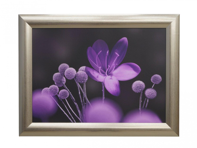 Obraz kwiaty fioletowe