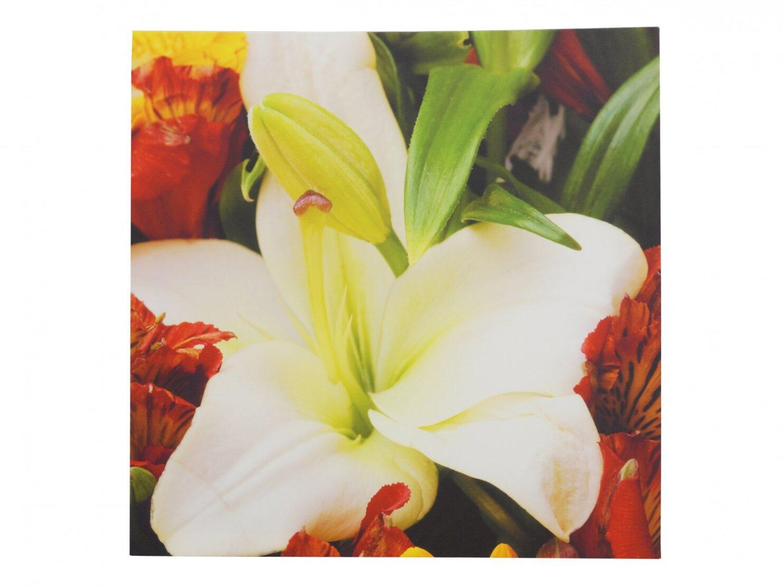 Obraz na płotnie kwiat biala lilia