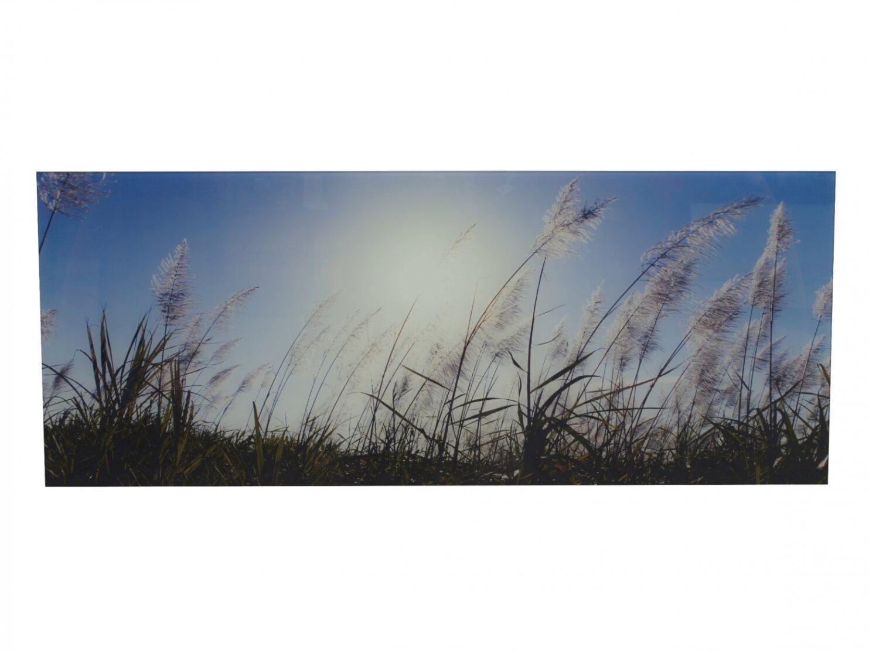 Obraz szklany polana